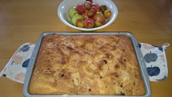 Eple,plomme-og rosinkake